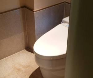 توالت-مدرن-ژاپنی